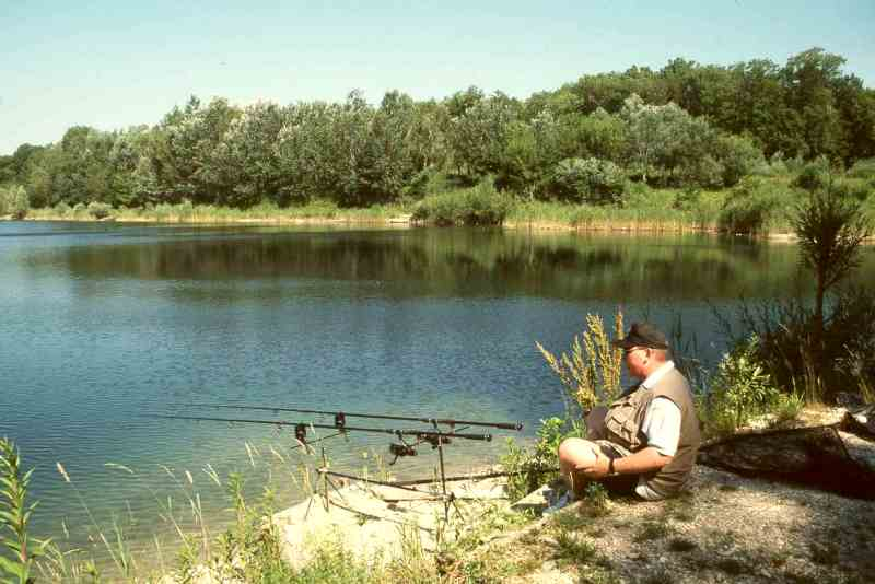 Harmonie am fischteich for Fischteich schutz